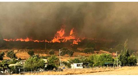 Bakan Pakdemirli'den İzmir'deki Yangınla İlgili Açıklama