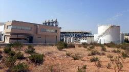 TMSF İzmir'de İki Santrali Satışa Çıkardı