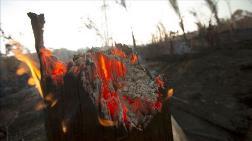Bolivya'da Yangınlar 950 Bin Hektar Alanı Kül Etti