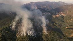 Kaş'taki Orman Yangınında Hızlı Müdahale Yayılmayı Önledi