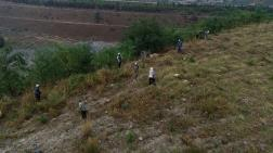 Eski Maden Sahaları Ağaçlandırılıyor