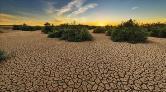 BM'den İklim Değişikliği Uyarısı