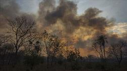 Amazonlarda Hava Kirliliği Artıyor