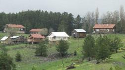 Sayıştay Raporları Orman İşgalini Ortaya Çıkardı
