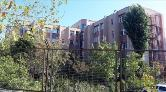 Cerrahpaşa'da İki Fakültede Eğitime Ara Verildi