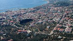 Kazdağları'nda Villa Yapımı için 2,5 Milyon Zeytin Ağacı Kesildi