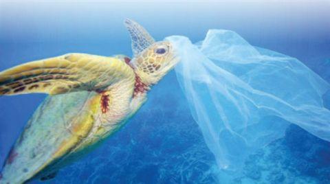 İzmir, Plastik Atıksız Şehirler Ağı'na Katıldı