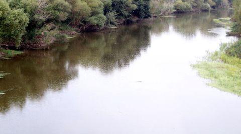 Gediz Nehri'nde Balık Ölümleri Devam Ediyor