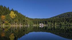 Doğa Koruma ve Milli Parklar Genel Müdürlüğü Kapatılıyor