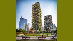 Mimaride Yeni Yaklaşım: Ağacın İzinde Yeşil Yapılaşma