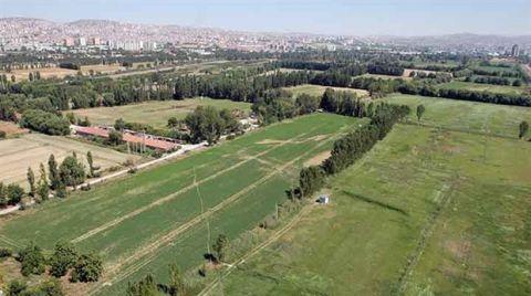 Atatürk Orman Çiftliği'nde Yapılaşma Israrı