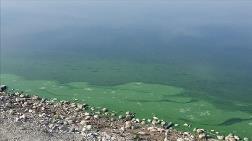 Atatürk Baraj Gölü'nün Kıyısında Renk Değişimi
