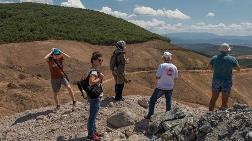 Kaz Dağları'nda 347 Bin 815 Ağacı Kestiler