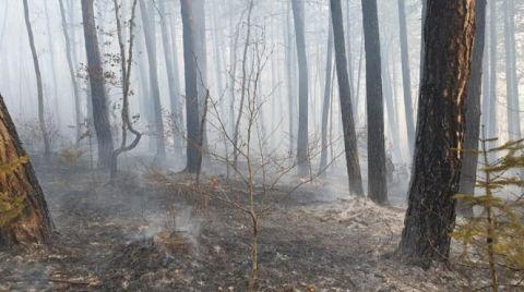 Kastamonu'da 4 Hektarlık Ormanlık Alan Yandı