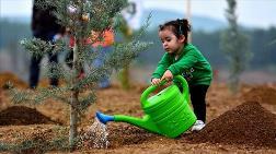 30 Bin Futbol Sahası Kadar Toprak Kurtarıldı