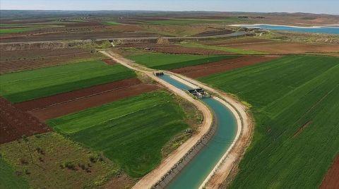 Güneydoğu'da Sulanan Arazilerden Ekonomiye Büyük Katkı