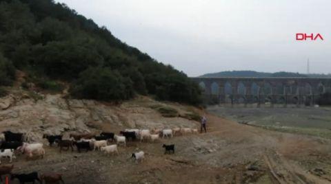 Barajların Doluluk Oranı Alarm Veriyor