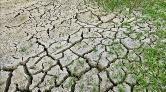 İklim Değişikliği En Büyük Sağlık Tehdidi Olabilir