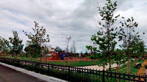 Şile'deki Parka Alıcı Çıkmadı