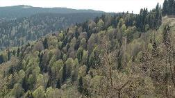 Erozyonla Taşınan Toprak Miktarı Yüzde 70 Azaldı