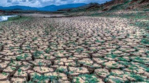 24 Belediye'den İklim Deklarasyonu