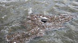İmalat Sanayi Su, Atıksu ve Atık İstatistikleri Açıklandı