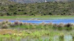 İris Gölü, Dipsiz Göl Olmasın