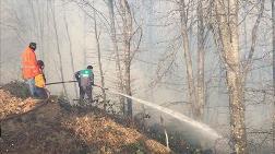 Karadeniz'de İki Günde 150 Noktada Yangın Çıktı