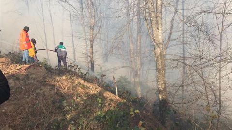 Karadeniz'deki Tüm Yangınlar Kontrol Altına Alındı