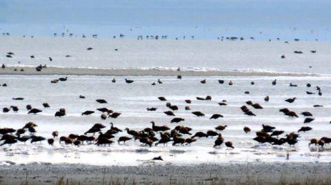 Kuruma Tehlikesindeki Seyfe Gölü'nde Su Seviyesi Yükseliyor