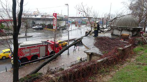 Beyoğlu'nda Devrilen Ağaç Tarihi Çeşmeye Zarar Verdi