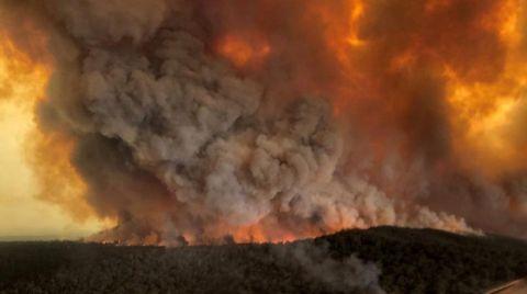 Avustralya Yangınları için Flaş İddia
