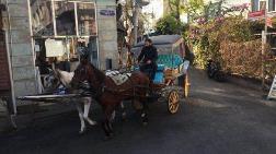 Adalar'daki Fayton ve Atları İBB Satın Alıyor