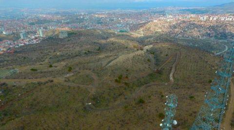 Atatürk Orman Çiftliği Yeniden Kuruluyor