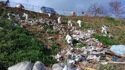 Adalar'da Fayton Temizliği: 25 Ton Atık Çıktı