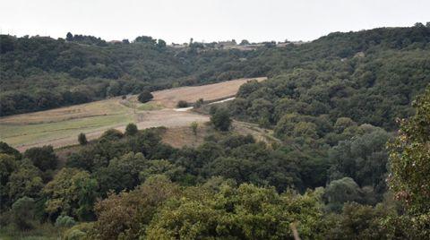 Çorlu'nun Tek Ormanlık Bölgesi Yaşamaya Devam Edecek