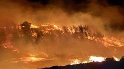 Adana'da İki Farklı Noktada Orman Yangını Çıktı