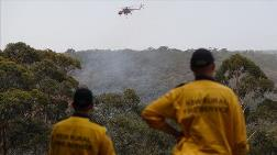 Avustralya'daki Yağmurlar Yangınların Üçte Birini Söndürdü