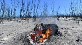 Avustralya'daki Yangınların Tamamı Kontrol Altına Alındı
