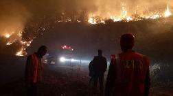 Artvin'de Orman Yangınında 10 Dönüm Alan Zarar Gördü