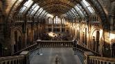 Dünyanın En Ünlü Müzeleri Evinizde