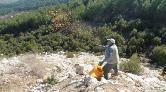 Maden Sahaları Yeşertiliyor