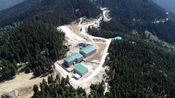 23 Kurumdan Artvin Valiliği'ne Maden Faaliyetlerini Durdurun Çağrısı