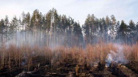 Çernobil'deki Yangın Söndürüldü