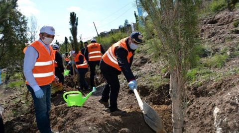 Kütahya'da TBMM'nin 100'üncü Yılına Özel Hatıra Ormanı