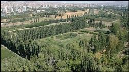 Yargı, Ankara'daki Orman Alanlarının Yapılaşmasına İzin Vermedi