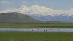Tamamen Kuruyan Kuyucuk Gölü, Yeniden Canlandı