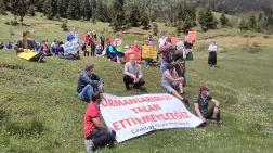 Trabzon Ormanına Sahip Çıkıyor