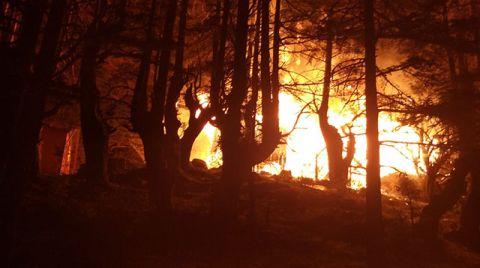 Kadirli'de Ahşap Evde Çıkan Yangın Ormana Sıçradı