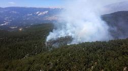 Demre'deki Yangında, 100 Dönüm Orman Alanı Kül Oldu